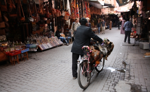 Medina alleyway. Photo by Sarah Reid