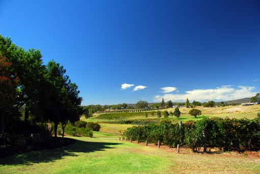 Image 5 - Australian wine tour, Swan Valley