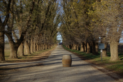Image 6 - Australian wine tour, Rutherglen